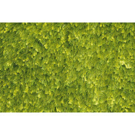 Tapis tufté mécanique shaggy vert Andrew