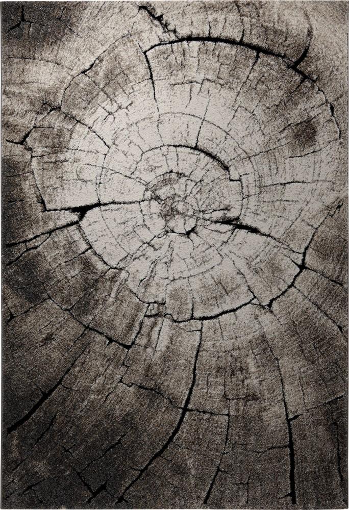 Tapis moderne marron à courtes mèches Wild Oak