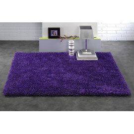 Tapis d'intérieur rectangle prune Raven
