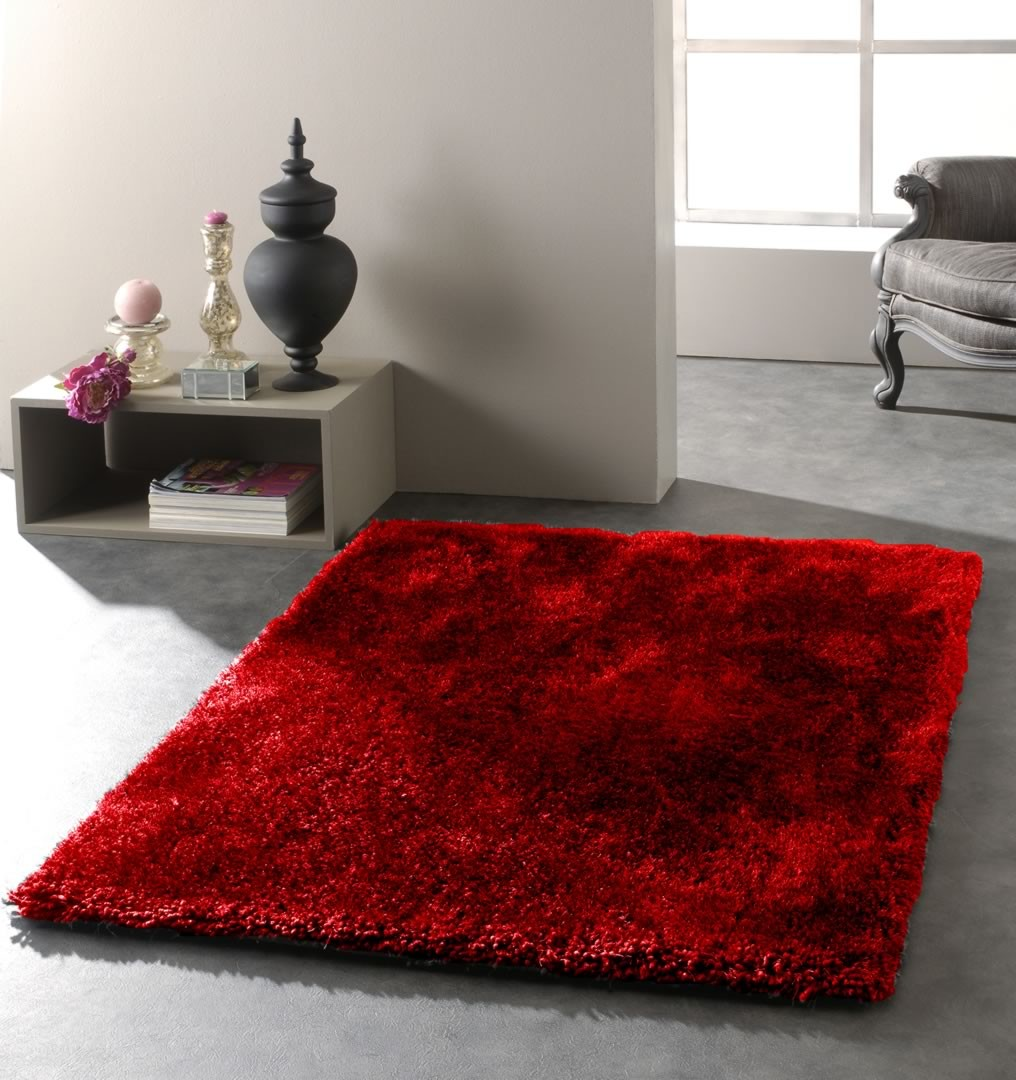 Tapis de salon rouge uni raven for Tapis salon rouge