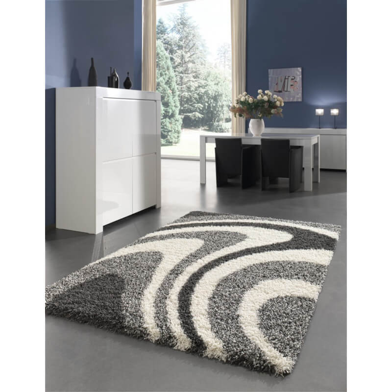 tapis salon gris design maison design. Black Bedroom Furniture Sets. Home Design Ideas